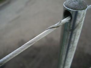 Lifeline Wires